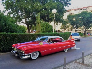 cadillac 1959 antropoti limousine oldtimer cars wedding cars in croatia (11)